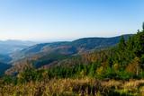 Herrliche Aussicht über den Schwarzwald