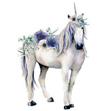 Watercolor elegant white unicorn with anemone flowers bouquet. Hand painted magic horse, white and blue anemone isolated on white background. Fairytale character illustration for design, print. - 227797497