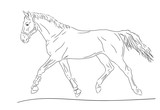 A sketch of a trotting horse. - 227823670