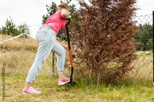 Foto Murales Woman digging hole in garden