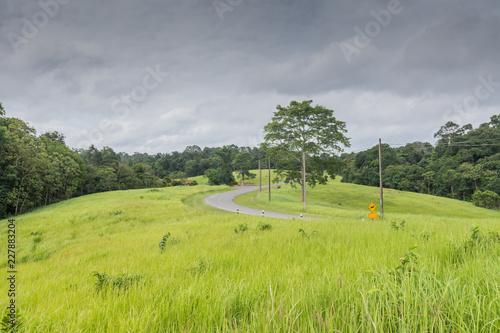 Green grass field at Khao Yai National Park,Thailand. - 227883204