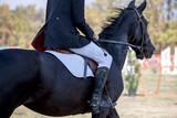 Dressage elegance - 227893018