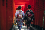 Two japanese girls wearing kimonos traditional clothes, lifestyle moments - 227911236