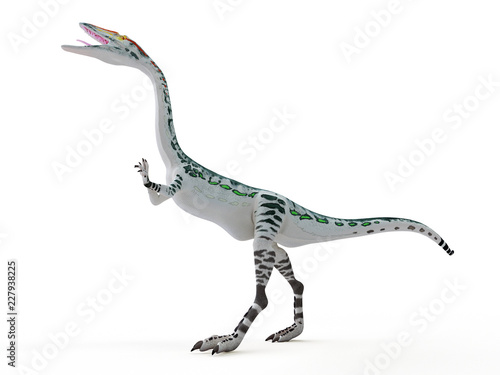 Poster 3d rendered illustration of a Coelophysis