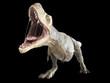 Leinwandbild Motiv 3d rendered illustration of a T-rex on black background