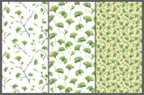 Set with three seamless patterns with green leaves of ginkgo biloba. Hand drawn illustration with colored pencils. Botanical natural design for textiles, interior or some background. - 227983007