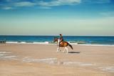 Pferd mit Reiter am Strand - 227985878