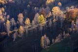 Beautiful autumn landscape in the mountains, Fundatura Ponorului Romania. - 227989685
