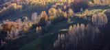 Beautiful autumn landscape in the mountains, Fundatura Ponorului Romania. - 227990653