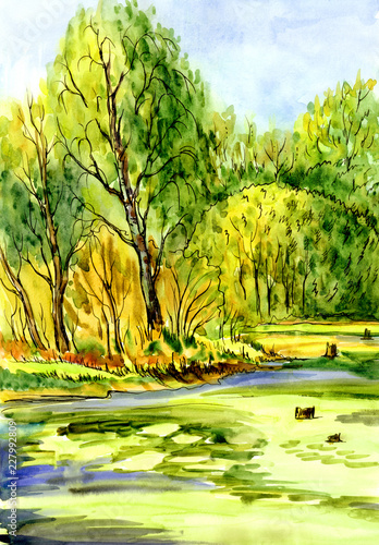 Leinwanddruck Bild Landscape with an overgrown pond and trees on the beach, sketch, watercolor drawing.