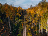 Road in autumn forest. - 228012821
