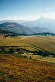 Landscape in autumn mountains. Vertical photo, Marmarosh mountain - 228019213