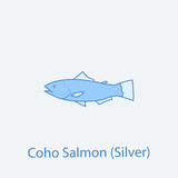silver salmon 2 colored line icon. Simple light and dark blue element illustration. silver salmon concept outline symbol design from fish set