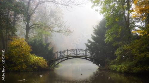 scenic-view-of-misty-autumn-landscape-with-beautiful-old-bridge-in-the-garden-with-red-maple-foliage