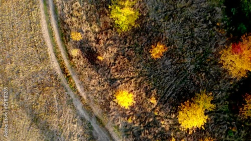 Forest seen from above. Beautiful, colorful woods in autumn. © Arkadiusz Fajer