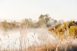 Misty autumn morning on the river. Grass in the meadow covered with hoarfrost. The first autumn frosts.  - 228111648