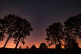 star sky with a milky way - 228122277