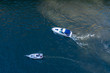 Overhead View of Two Boats on the Chicago River