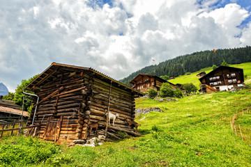 Switzerland Log Cabins with Mountain Goats