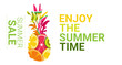 tropical pineapple fruits colorful enjoy summer organic over white background healthy lifestyle or diet concept copy space vector illustration - 228140024