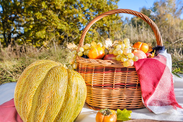 basket of fruits (apples, persimmon, grapes, pomegranates) and melon against a background of autumn trees