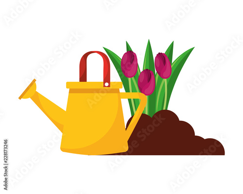Wall mural gardening watering can and flowers