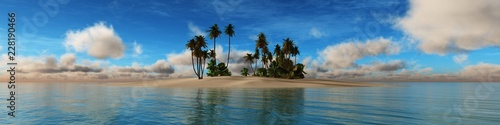 Tropical island in the ocean, sea view panorama with palm trees  - 228190466