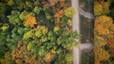 Drone Shots of Northern Fall Colors by the lake - 228219052