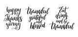 Set of Thanksgiving Day lettering. Modern brush calligraphy for cards, flyers and posters. holiday handwritten phrases. - 228299441