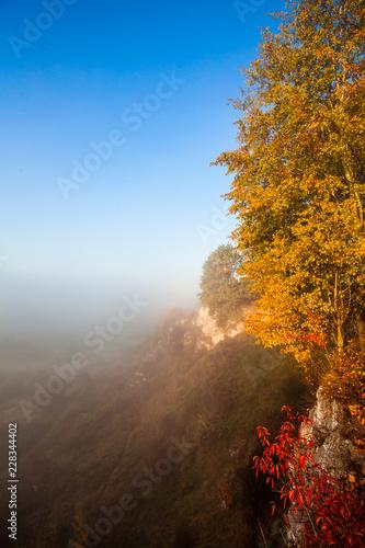 Sticker Colorful autumn scenery