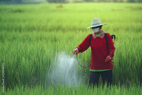 Leinwandbild Motiv  pesticides is harmful to health
