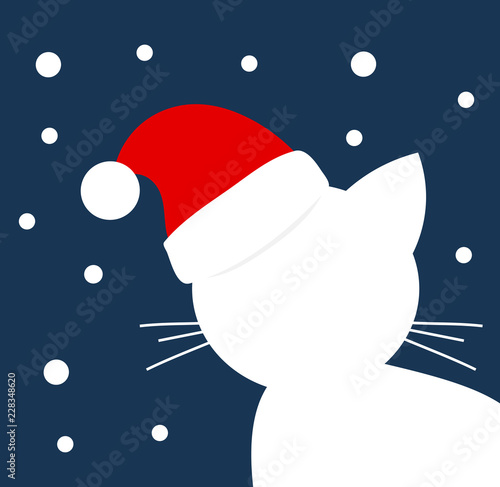 White cat in Santa hat looking on snow