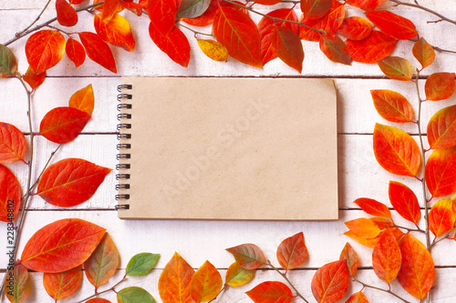 autumn background with branches and colorful autumnal leaves, notebook for notes - 228348802
