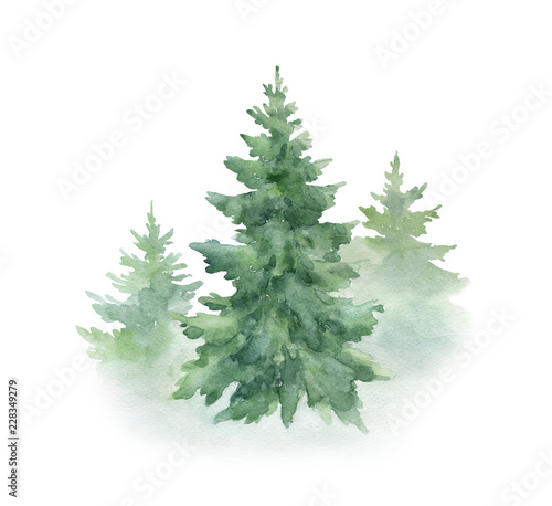 obraz PCV Christmas tree isolated on white background.Watercolor illustration.