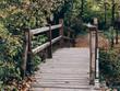 Old wooden bridge in deep forest, natural vintage background. Wooden bridge in autumn park