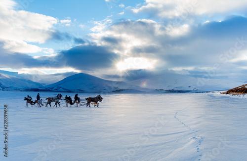 horses pulling sleigh in winter cildir lake kars buy photos