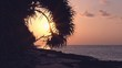Sunset on tropical seashore