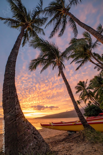 Paddling Canoe on beach in Maui at sunset