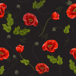 Delicate seamless pattern with poppies. Vector illustration.