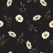 Delicate seamless pattern with chamomile . Vector illustration.