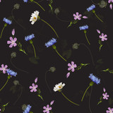 Delicate seamless pattern with wildflowers . Vector illustration. - 228428877
