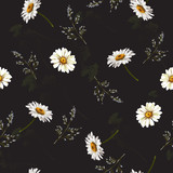 Delicate seamless pattern with chamomile . Vector illustration. - 228428897