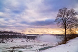 A lone tree overlooks the frozen Niagara river and falls in winter