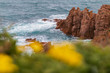 Quadro Beautiful nature view side by ocean