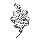 branch with leafs isolated icon