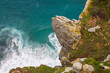 Quadro Cape point nature reserve South Africa