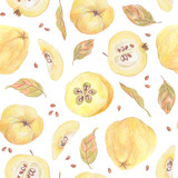 Seamless pattern. Quince, leaves and seeds painted with colored pencils isolated on a white background. Food repeated illustration. Fruit endless design for fabric, wrap paper or wallpaper. - 228512238