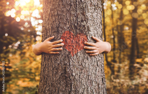Nature lover, close up of child hands hugging tree with copy space - 228517022