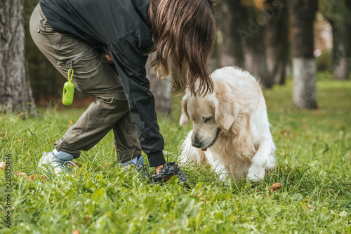 Leinwanddruck Bild young woman cleaning after dog in park