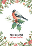 Watercolor vector greeting card with Christmas tree, spruce branches and gifts. - 228528454